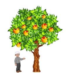 Маленький мальчик и яблоня