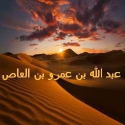 Абдуллах ибн Амр ибн аль-Ас