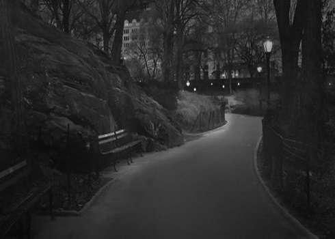 Дорога через парк