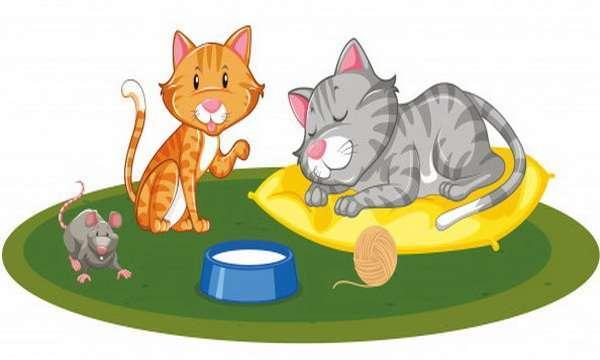 Кошки и мышь
