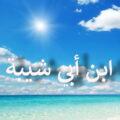 Ибн Абу Шейба