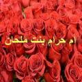 Умм Харам бинт Малхан